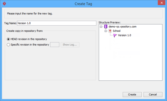 The Create Tag window